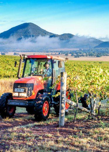 james-estate-wines-story