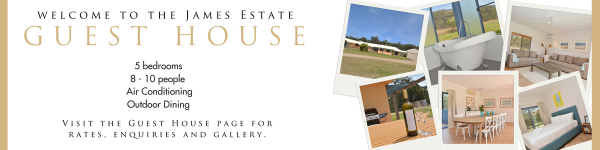 GUEST-HOUSE-web-banner